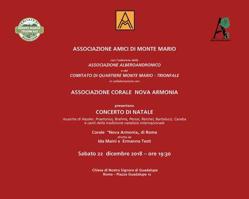 Concerto di Natale con Alberoandronico